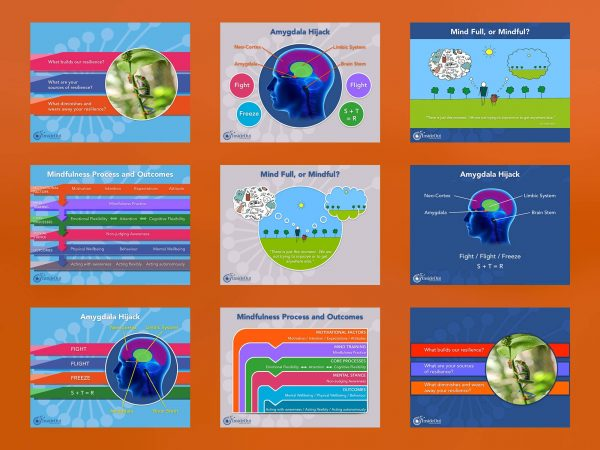 BrainVox - Business Support - Powerpoint Templates