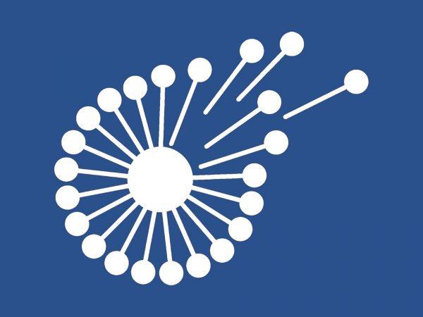 BrainVox - Icon- Favicon - Logo