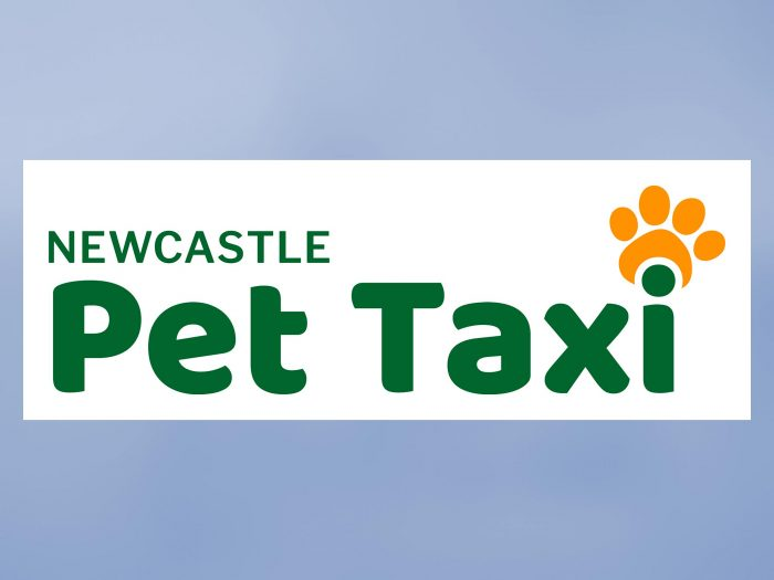 BrainVox - Newcastle Pet Taxi - Logo / Icon