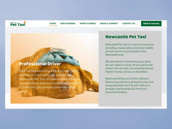 BrainVox - Newcastle Pet Taxi - Home Page